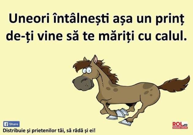 asa un print ca-ti vine sa te mariti cu calul