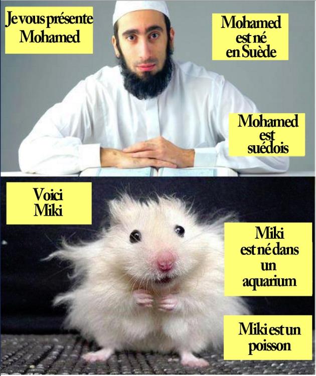 Mohamed-est-suédois